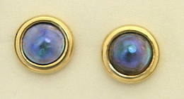 E11 Paua  pearl gold stud Earrings